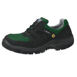 Anatom Safety shoe