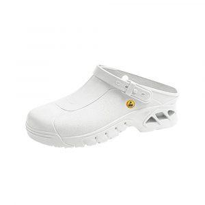 Autoclavable-shoe